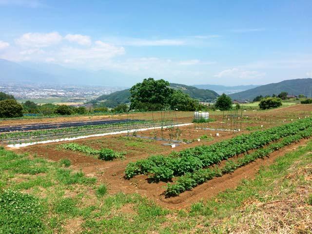 親子農業体験農場