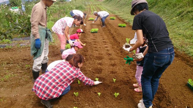 9月13日親子農業体験