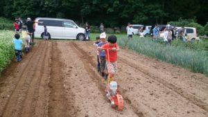 9月11日親子農業体験 野沢菜播種