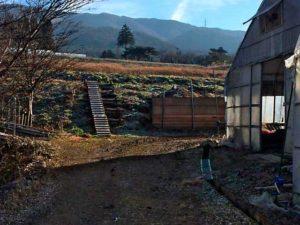 南側 農場階段スロープ付