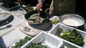 山菜採り&山菜料理昼食会