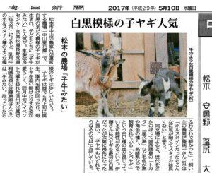 伊藤さん子ヤギ記事
