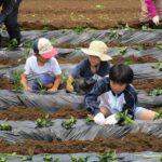"""<span class=""""title"""">R03親子農業体験教室06月19日</span>"""