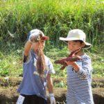 R01親子農業体験教室10月13日