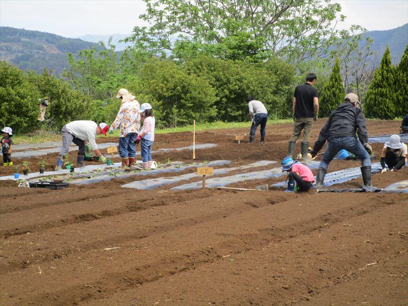 200517_oyako005